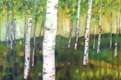 Birches Oil on Canvas 55x62 2015